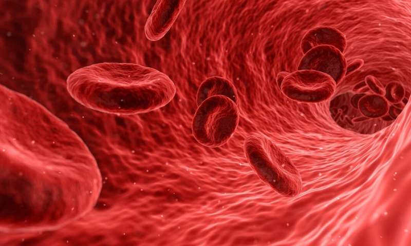 Glowing Extracellular Vesicles In Blood May Aid In Diagnosing Brain Cancer